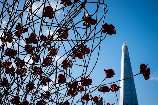 Poppies and The Shard, London