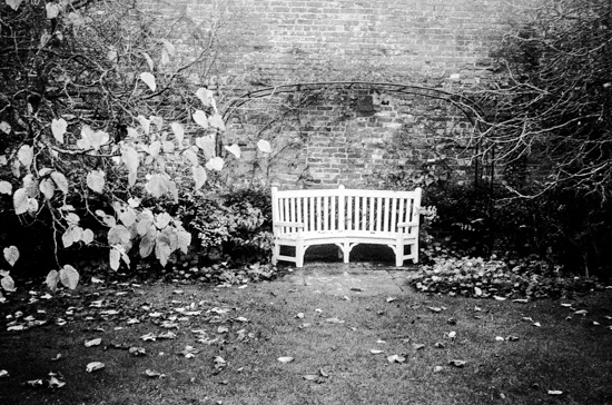 Lonely Bench at Berrington Hall, Leominster (UK)